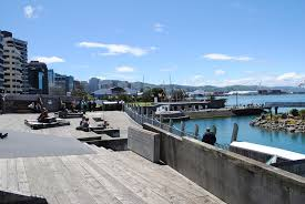 Wellington waterfront is full of places to sit, swim, get close to the water and enjoy the invigorating breezes (and the wildlife, if we're lucky)